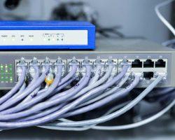 Gros plan sur des câbles courant faible pour la connexion internet